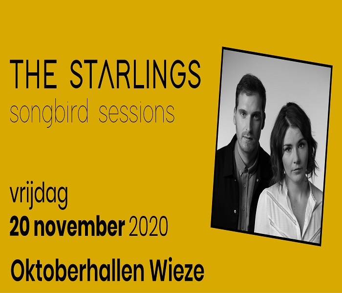 The Starlings songbird session